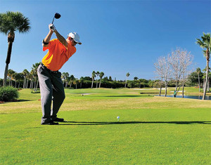 Florida has the most golf courses in the country. Estimated economic impact: $20 billion for the state.
