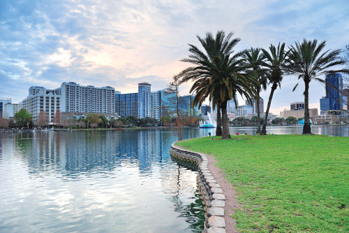A lake to a view: condominiums in downtown Orlando.