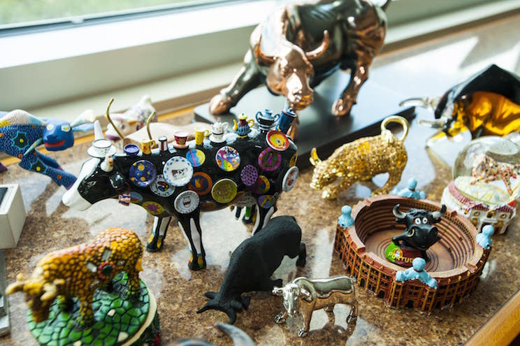 USF bull figurine collection