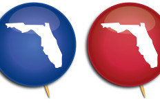 Florida red and blue pins