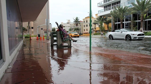 King tide floodwaters inundate portions of Collins Ave in Miami Beach