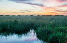 sunset over scenic Everglades National Park